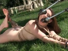 Tied girl sucking on dildos outdoors videos