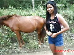Hd peeing next to horse in jungle movies at freelingerie.us