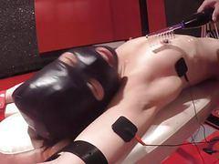 Elitist abnormal woman,pet play,electric videos