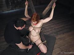 All tied up and nowhere to go movies at dailyadult.info