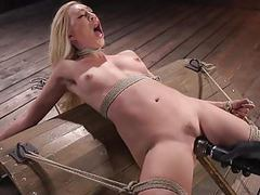 Hot blonde lyra law is bound videos