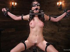 Screaming bondage movies at kilotop.com