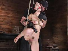 Bondage slut's torment videos