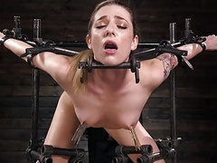 Dahlia suffers in extreme bondage videos