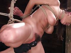 Karlee grey suffers in brutal bondage videos