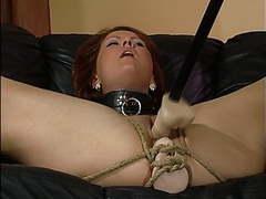 Slave za sexuality training. videos