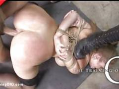 Brand new busty babe bound and beaten videos