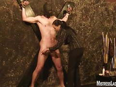 Lady jenny tortures slave fastened to the wall videos