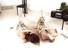 Cuties roomates nude hogtied movies at reflexxx.net