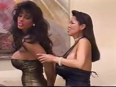 Catfight titfight videos