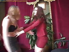 Cat fighting at clips4sale.com videos