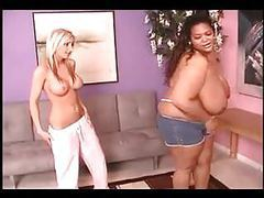 Interracial catfight big ebony vs skinny ivory tubes