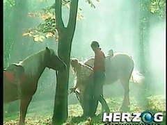 Herzogvideos heidi lasst sie alle jodeln teil 6 videos