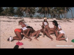 Orgy on a sandy beach with sexy sluts tubes