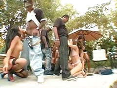 Blacks and asians orgy part.1 - re-uploaded movies at freekiloporn.com