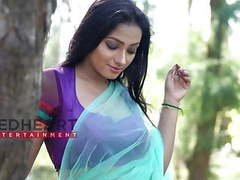 Aranye saree shreemoyee  sky color saree videos