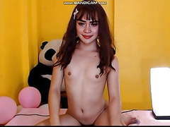 Thai ladyboy webcam amateur big cock videos