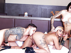 The hottest shemale bareback sandwich with vitoria and bruna movies at nastyadult.info