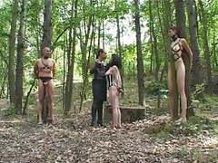 4660281 schwarze flamme silverline 2 der schmerzwald 24..... videos