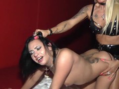 German amateur lesbian try strapon, Lesbian, German, Toys, Strapon, Tattoo, Thong, Natural Tits, Bra movies at freekilosex.com