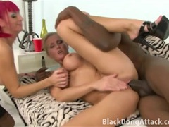 Big black dong fucking a white pussy videos