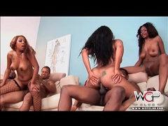 Black cunts and asses fucked in ebony orgy videos