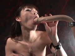 Submissive japanese girl sucks a dildo tubes at japanese.sgirls.net