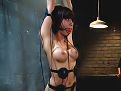 Fisting a tied up slut videos
