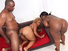 Black chicks trade black cock movies at kilopics.net