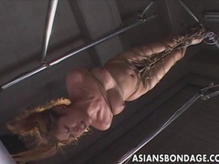 Asian bondage scene with rope suspension and forced orgasm tubes at korean.sgirls.net
