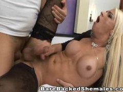 Cute shemale takes cock in her ass videos