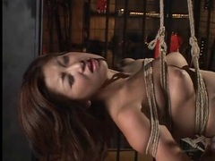 Japanese girl hangs there in rope bondage tubes at japanese.sgirls.net