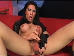 Shemale masturbates and sucks big cock videos