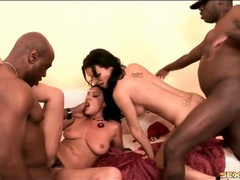 Busty babes and their black lovers fuck wildly videos