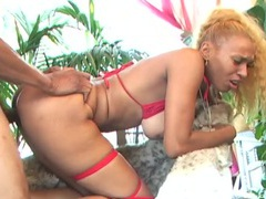 Tit fondling black chick fucked in her pierced pussy videos