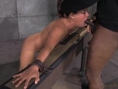 Slut bound in the dungeon and fucked from both ends movies at freekiloclips.com