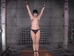 Bondage and nipple clamps for a girl in the dungeon movies at sgirls.net