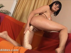 Thick and horny amateur bounces on a big brutal dildo movies at sgirls.net