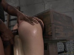 Slave in a box fucked in the ass from behind movies at kilosex.com