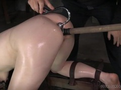 Toy and hook in the ass of a bondage babe videos
