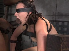 Bound chick sitting on the sybian gags on a dick videos