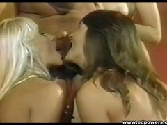 Three vintage sluts blow and fuck peter north movies at lingerie-mania.com