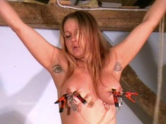 Busty amateur bdsm of crazy painslut movies at kilotop.com