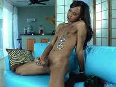 Black transsexual masturbates her big cock movies at kilotop.com