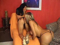 Two trannies in thongs have hot sex movies at find-best-mature.com