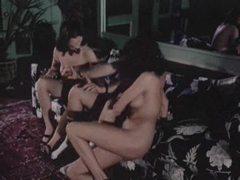 Retro orgy in the bar stars beautiful women videos