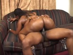Black fatty fucked hard from behind movies at freekilomovies.com