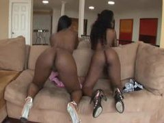 Hot black chicks dance and rub naked tubes