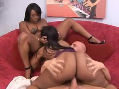 Big ass black sluts share his white cock movies at dailyadult.info