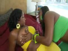 Curvaceous black chicks make lesbian porn videos